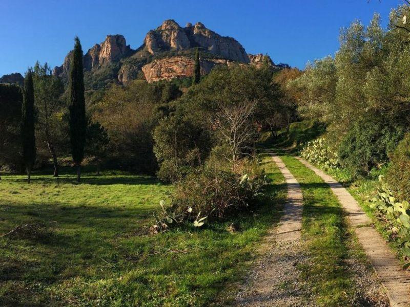 Rental house / villa Roquebrune sur argens  - Picture 2