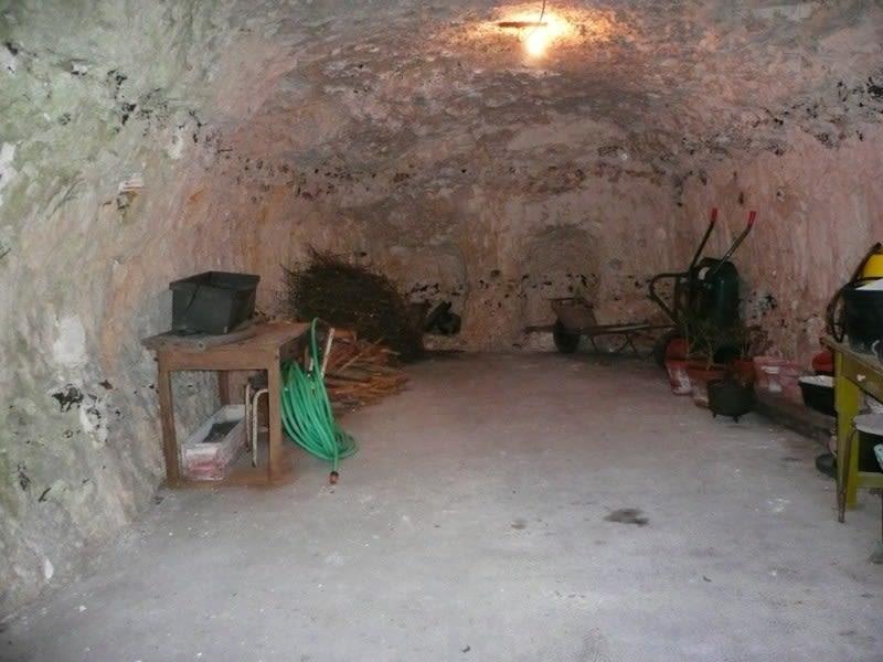 Vente maison / villa La roche guyon 493000€ - Photo 8