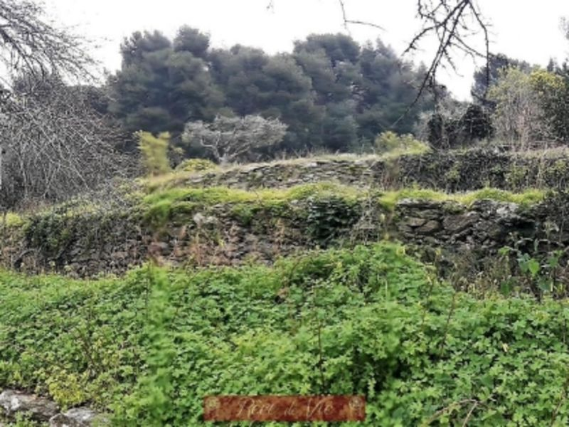 Vente terrain Bormes les mimosas 230000€ - Photo 1