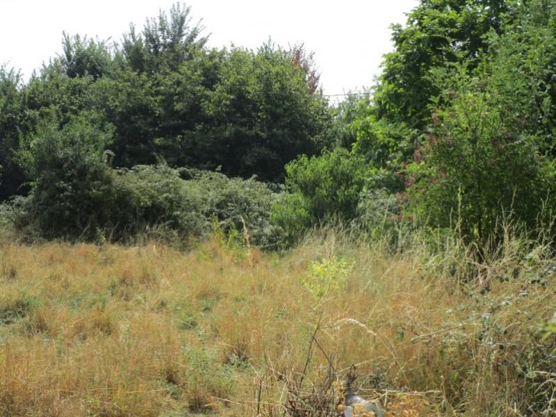 Vente terrain Souvigne 33200€ - Photo 4