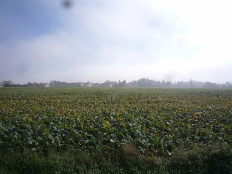 Vente terrain St maixent l ecole 187200€ - Photo 3