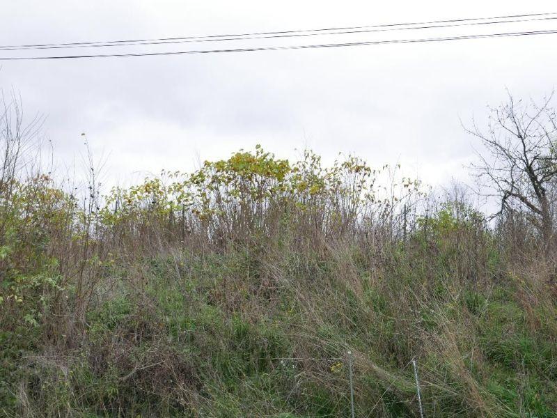 Entre GALLARDON et RAMBOUILLET
