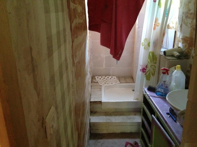 Vente maison / villa Labastide rouairoux 45000€ - Photo 5