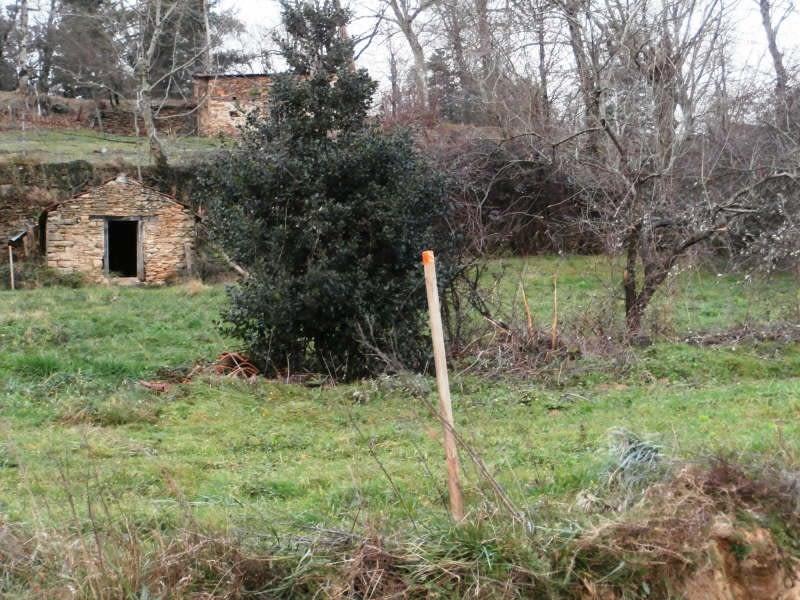 Vente terrain Alentours de mazamet 56000€ - Photo 6