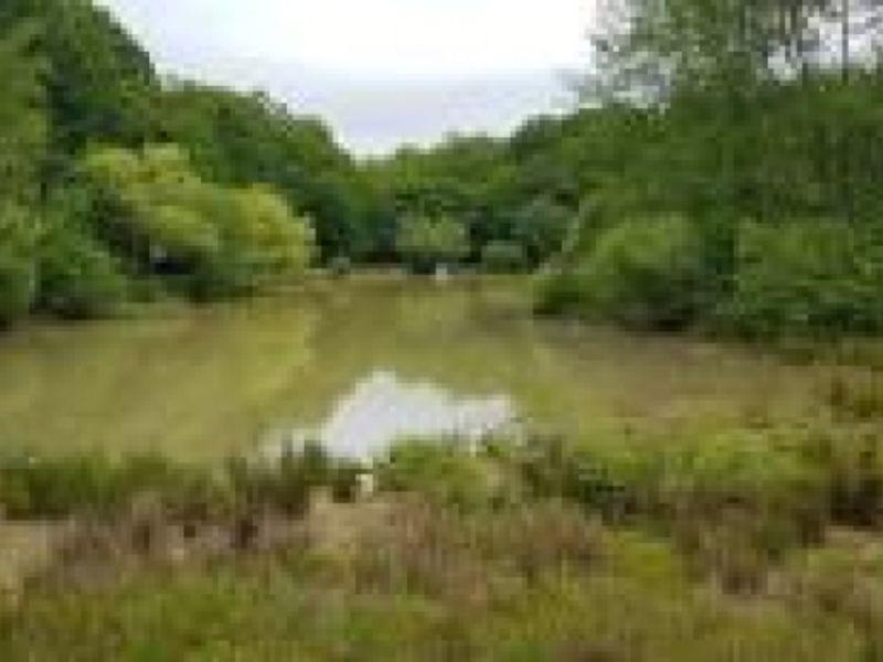 Vente terrain St fargeau 76000€ - Photo 4