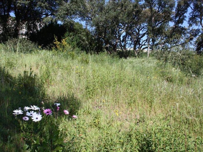 Vente terrain Les issambres 420000€ - Photo 3