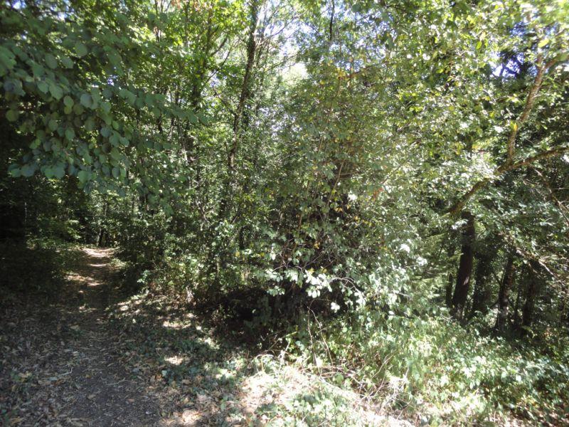 Vente terrain Bonnac la cote 17800€ - Photo 2