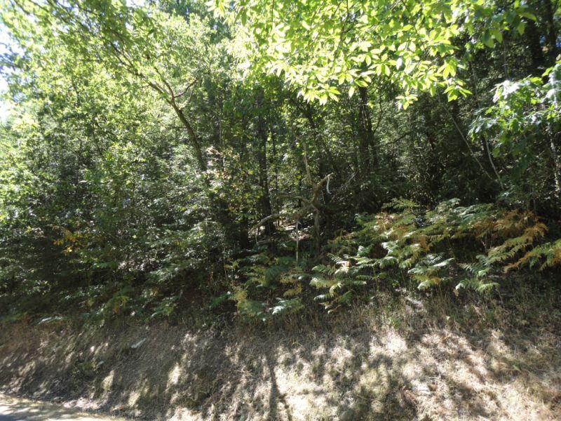 Vente terrain Bonnac la cote 17800€ - Photo 3