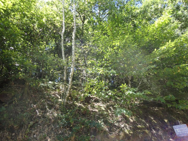 Vente terrain Bonnac la cote 17800€ - Photo 4