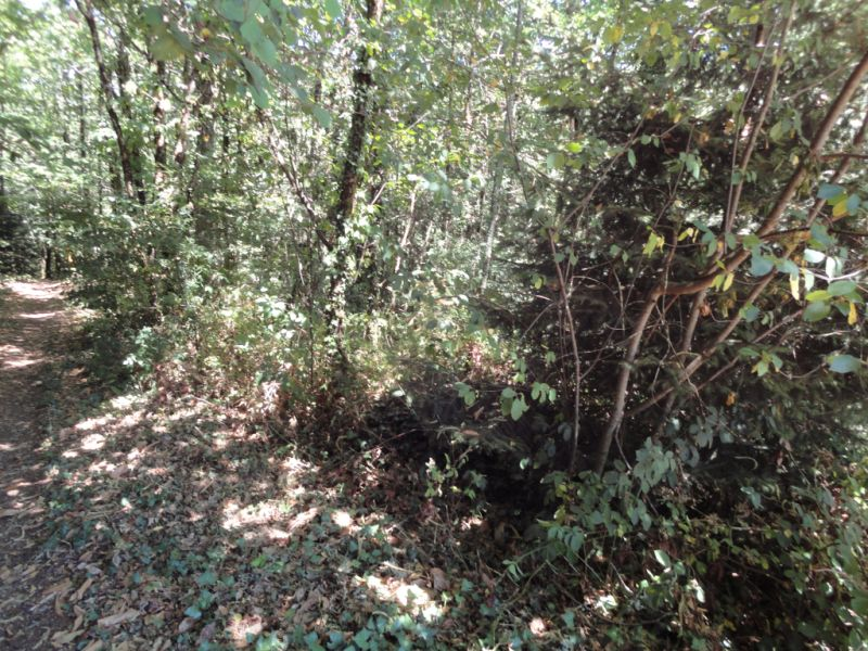 Vente terrain Bonnac la cote 17800€ - Photo 5