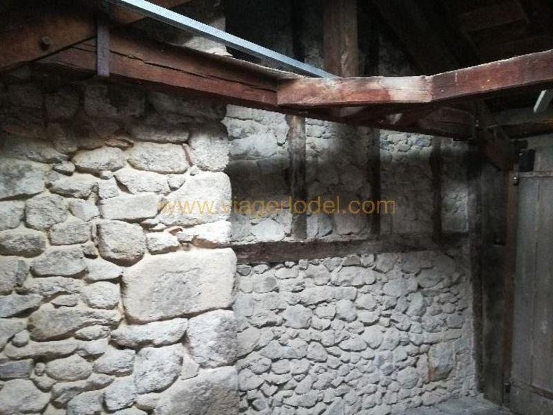 Life annuity house / villa Laroquebrou 17000€ - Picture 10