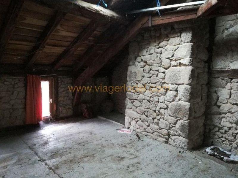 Life annuity house / villa Laroquebrou 17000€ - Picture 9