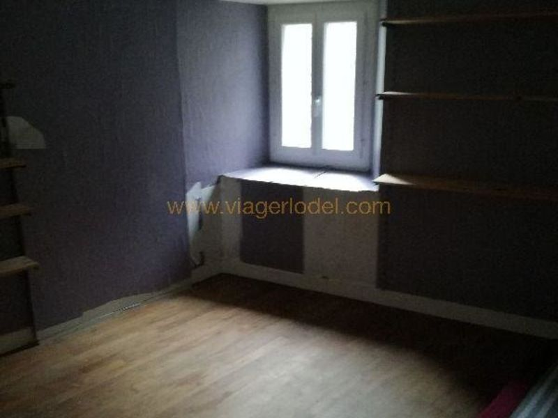 Life annuity house / villa Laroquebrou 33 000€ - Picture 4