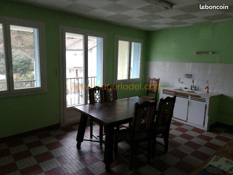 Life annuity house / villa Laroquebrou 33 000€ - Picture 1