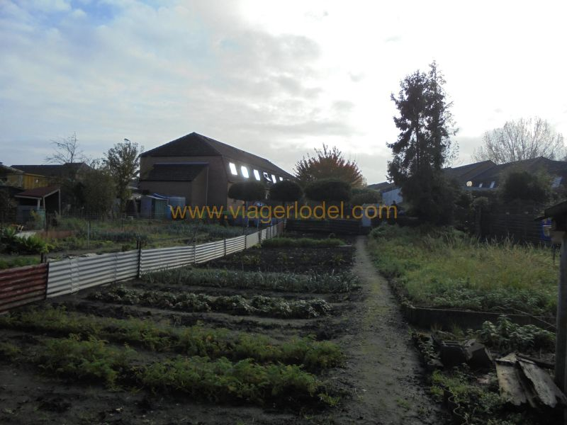 Life annuity house / villa Anzin 59 500€ - Picture 9