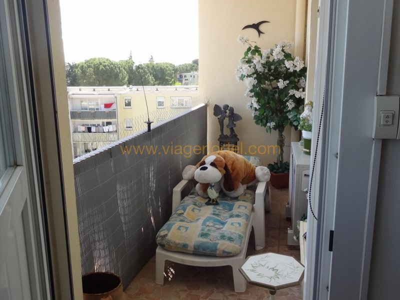 Life annuity apartment Lunel 35 000€ - Picture 3