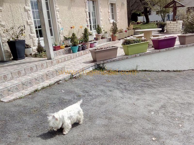 Life annuity house / villa Cornil 40000€ - Picture 2