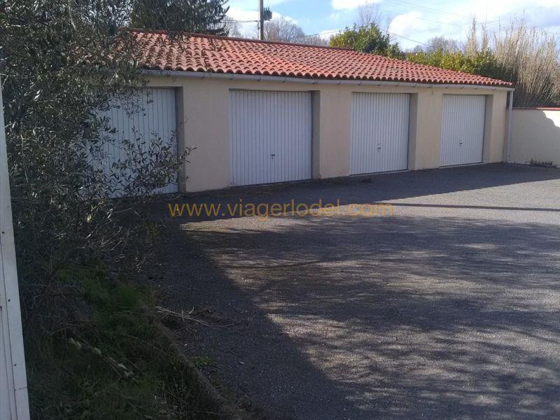 Viager maison / villa Blaye-les-mines 60000€ - Photo 16