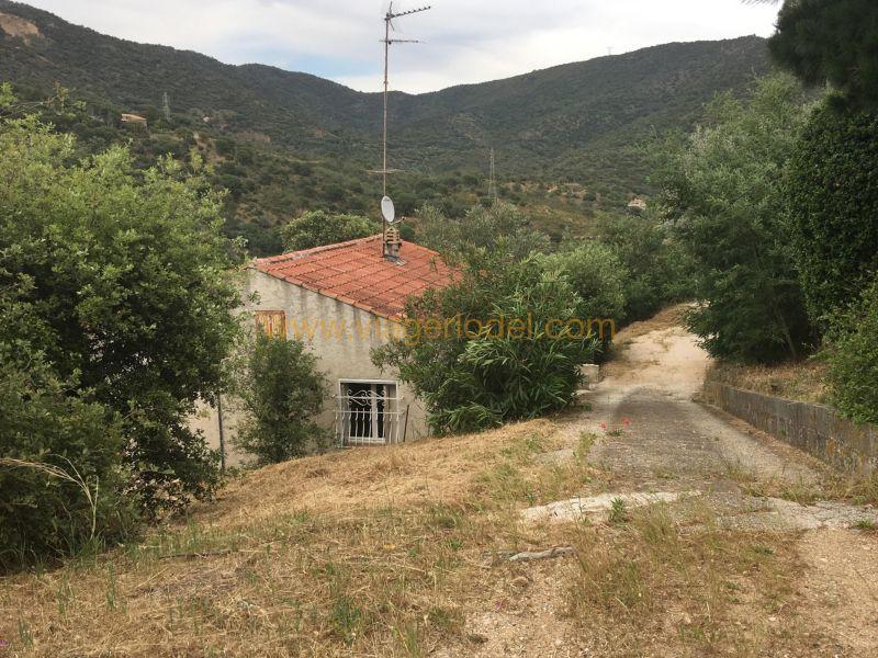 Life annuity house / villa Bormes-les-mimosas 102500€ - Picture 1