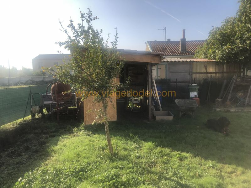 Life annuity house / villa Bruges 60 000€ - Picture 5