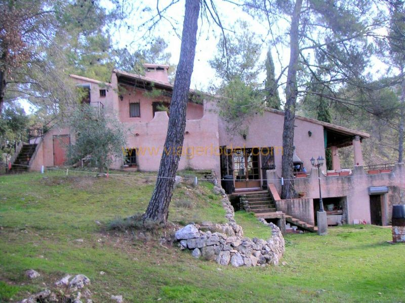 养老保险 住宅/别墅 Rougiers 295000€ - 照片 2