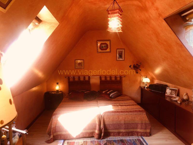 Verkauf auf rentenbasis haus La forêt-fouesnant 145000€ - Fotografie 20