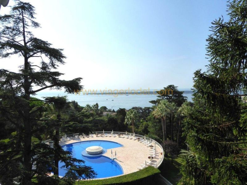 Life annuity apartment Cannes 602000€ - Picture 2
