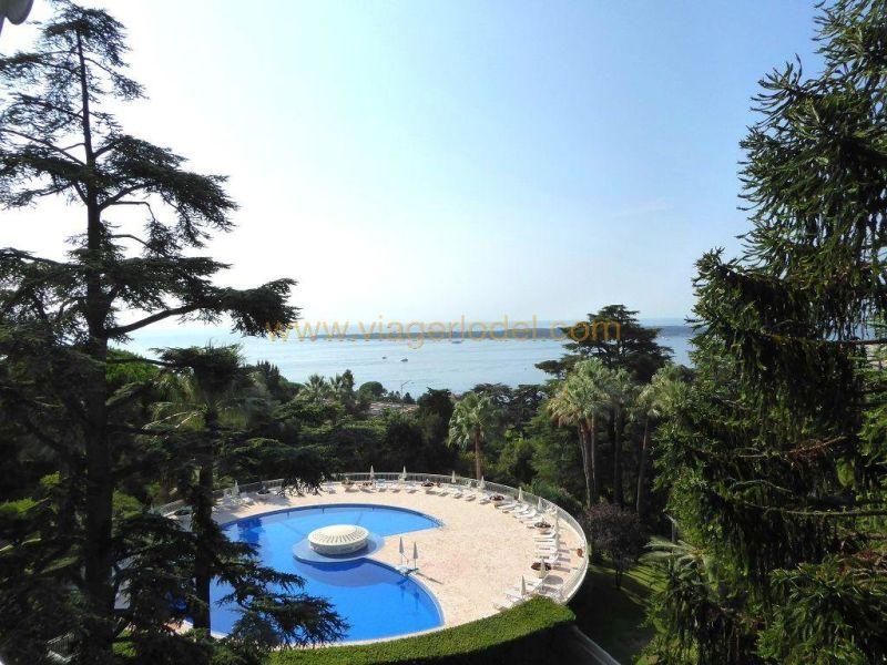 Verkauf auf rentenbasis wohnung Cannes 602000€ - Fotografie 2