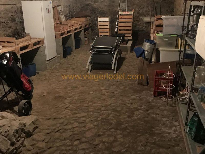 Viager château Chambéry 1090000€ - Photo 9