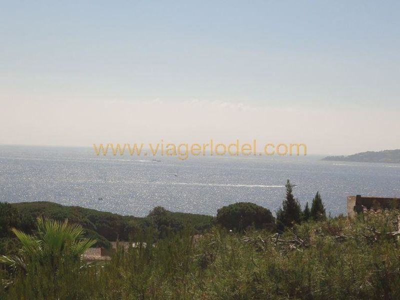 Life annuity house / villa Sainte-maxime 1045000€ - Picture 18
