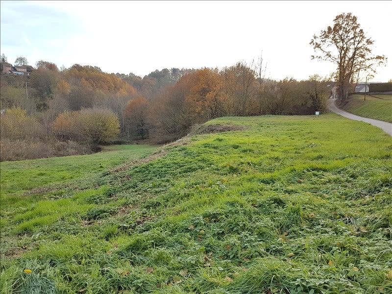 Vente terrain St die 31600€ - Photo 3