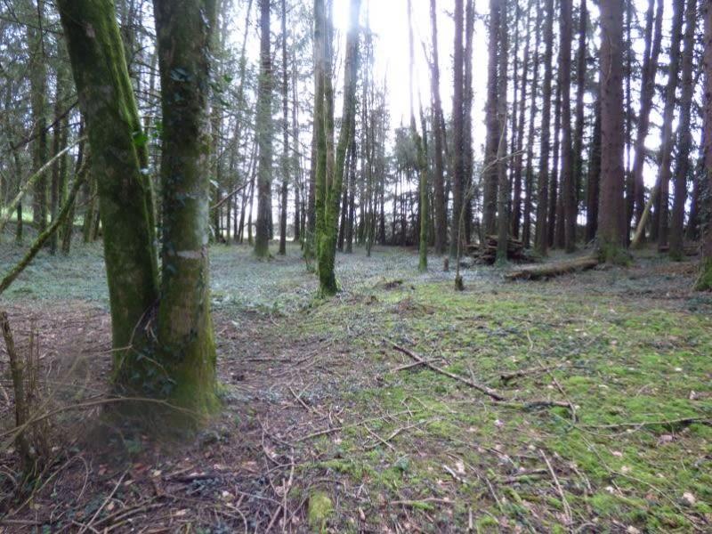 Vente terrain St amans valtoret 85000€ - Photo 5