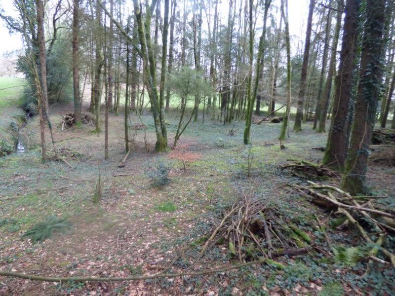 Vente terrain St amans valtoret 85000€ - Photo 6