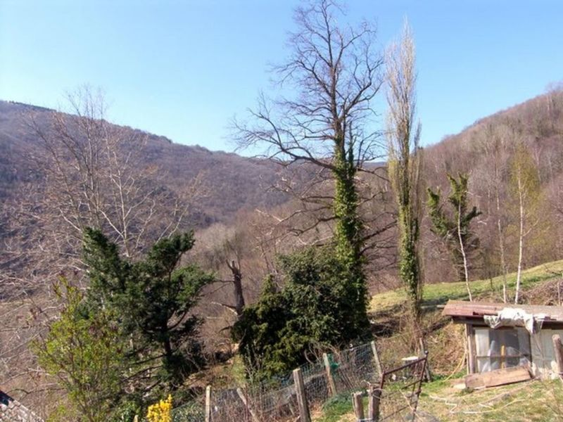 Sale house / villa Prats de mollo la preste 265000€ - Picture 12