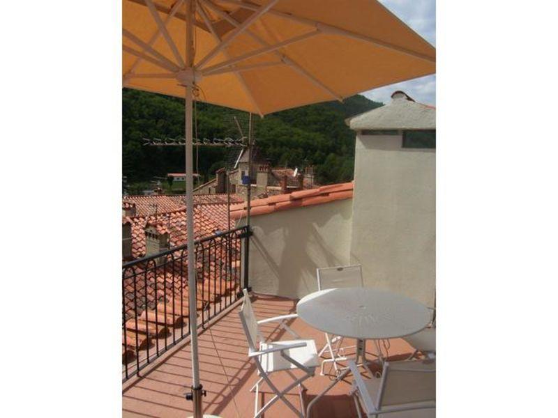 Vacation rental apartment Prats de mollo la preste  - Picture 4