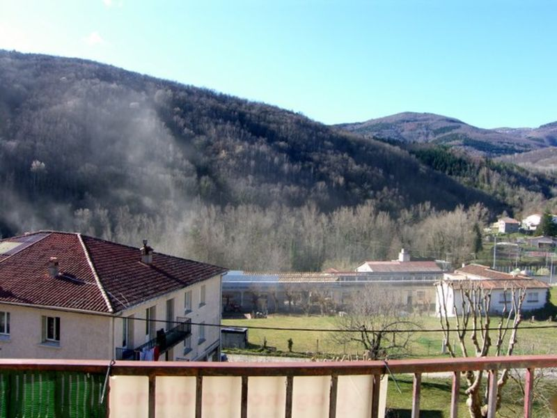 Sale apartment Prats de mollo la preste 65 000€ - Picture 6