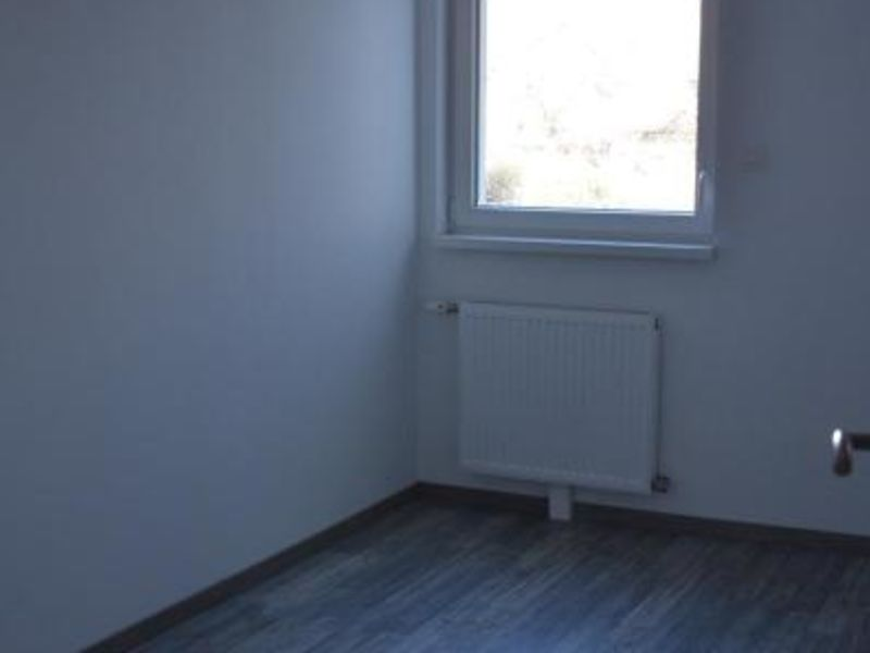 Location appartement Hegenheim 883€ CC - Photo 7