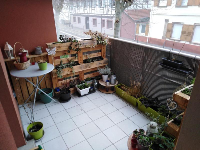 Location appartement Benfeld 520€ CC - Photo 9