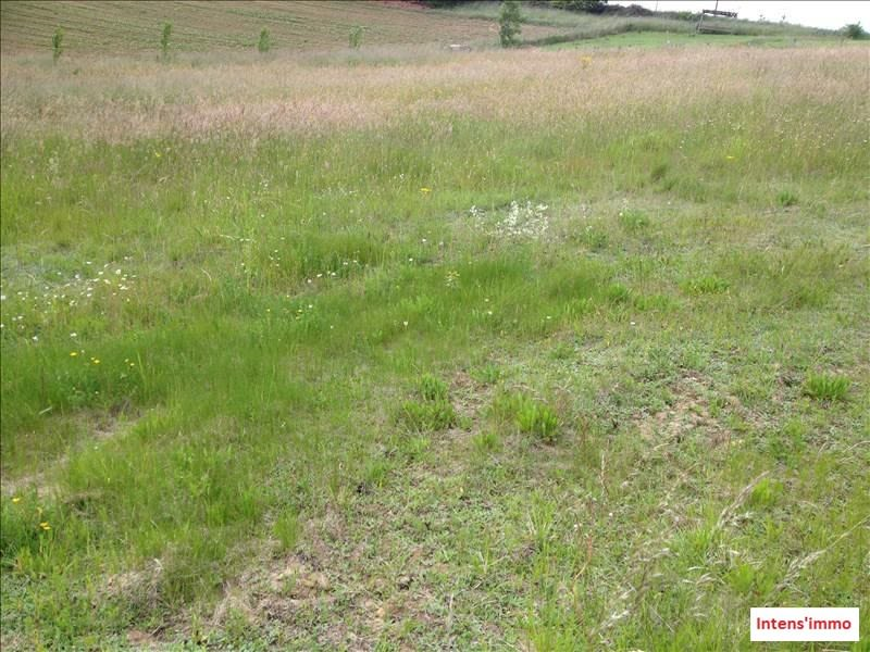 Sale site Saint antoine l'abbaye 97 000€ - Picture 3