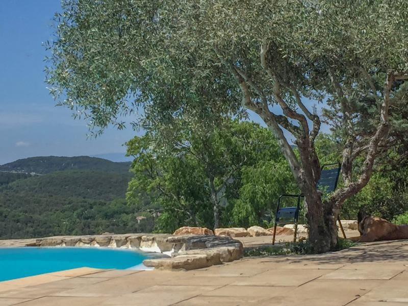 Vente maison / villa Uzes 1350000€ - Photo 4