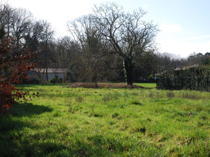 Vente terrain 17920 397000€ - Photo 3