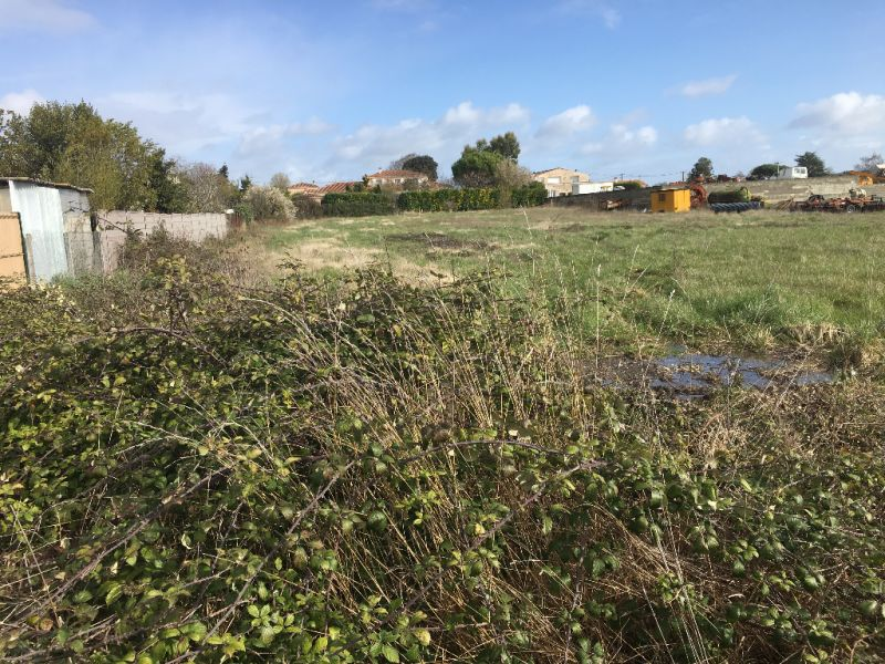 Sale site Saint sulpice de royan 91 000€ - Picture 5
