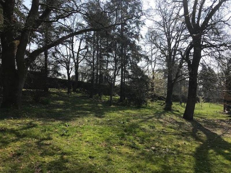 Vente terrain Brinon sur sauldre 50000€ - Photo 2