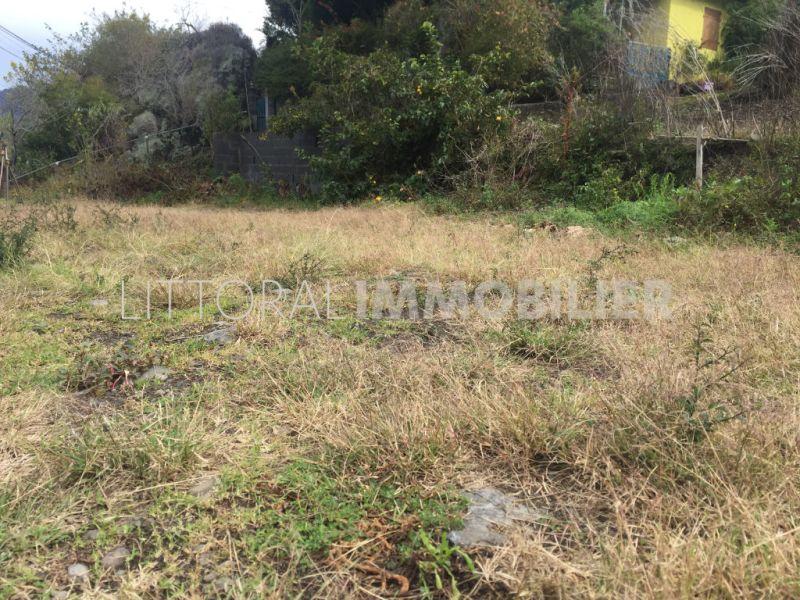 Venta  terreno Cilaos 77000€ - Fotografía 1