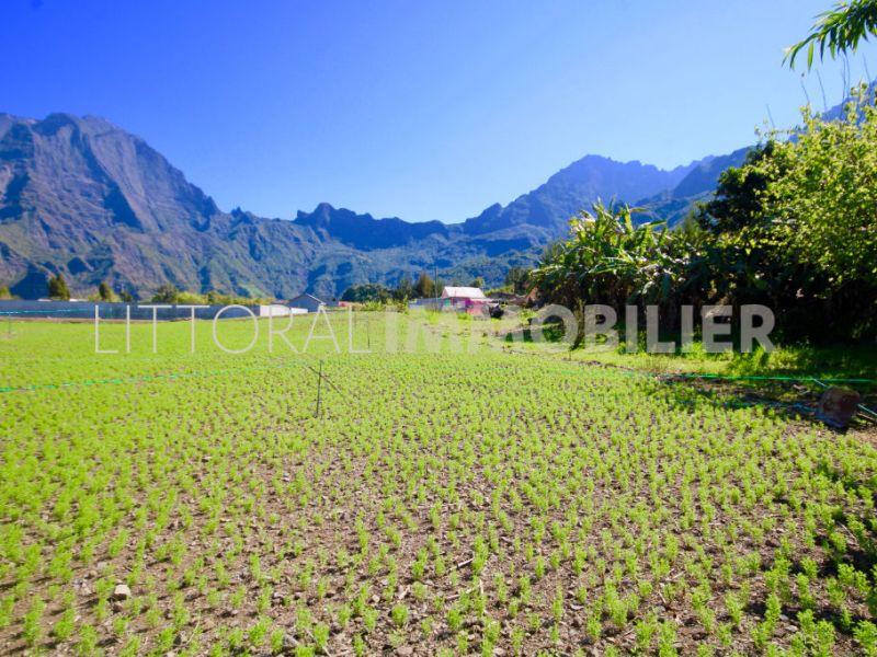 Verkauf grundstück Cilaos 352000€ - Fotografie 2