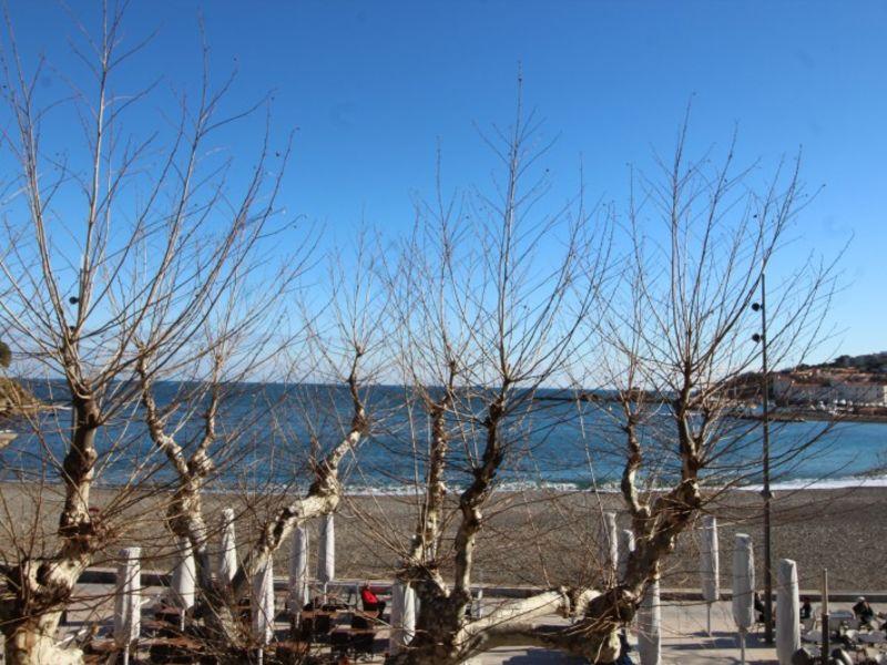 Location vacances appartement Banyuls sur mer  - Photo 2