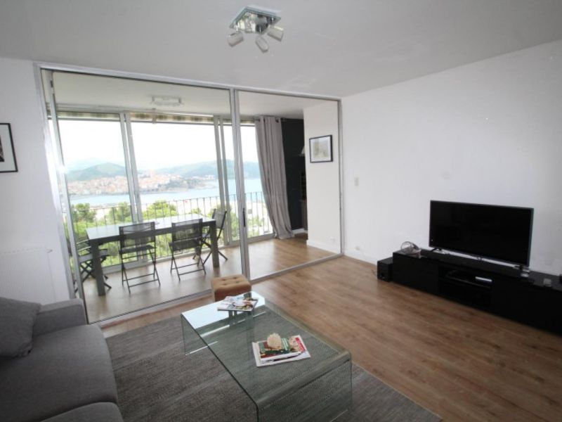 Vacation rental apartment Banyuls sur mer  - Picture 1