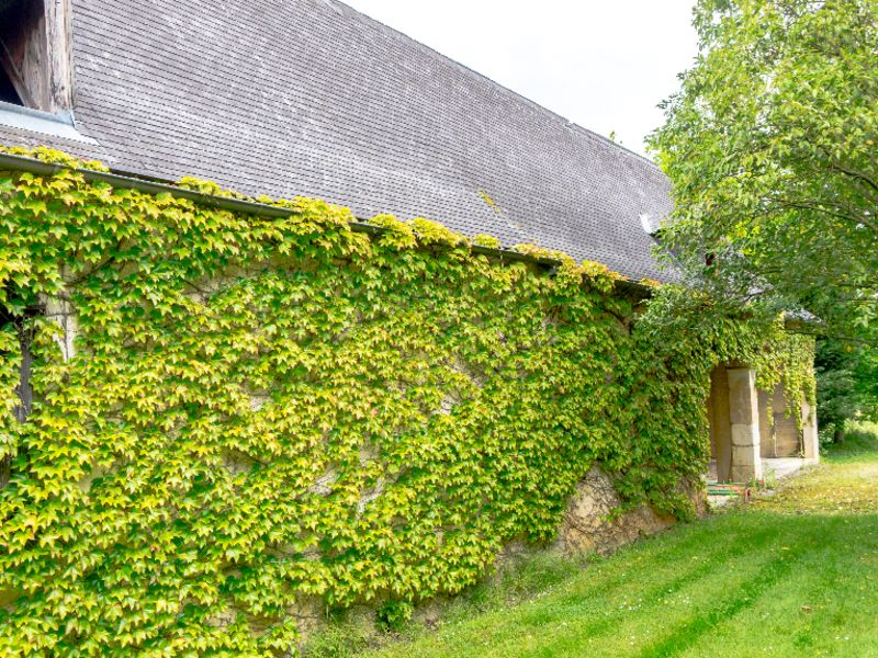 Sale house / villa Morlaas 449000€ - Picture 3