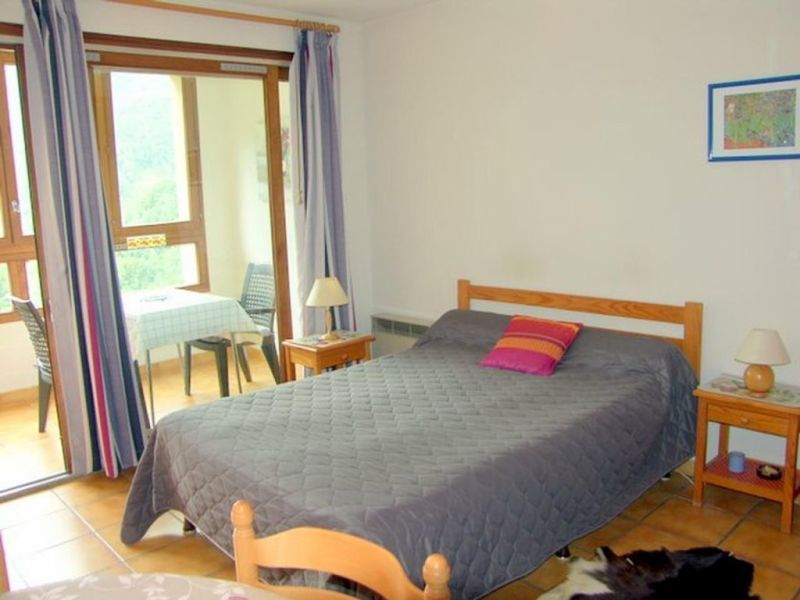 Sale apartment Prats de mollo la preste 40000€ - Picture 4