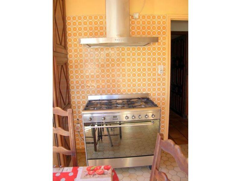 Vacation rental house / villa Prats de mollo la preste  - Picture 9